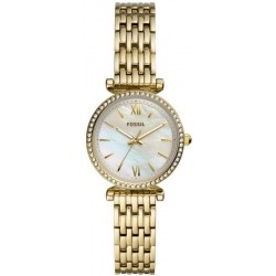 Buy Fossil Ladies Watch Carlie Mini ES4735 Mother of Pearl Quartz