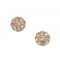 Buy Fossil Ladies Earrings Vintage Glitz JF00830791