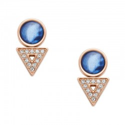 Buy Fossil Ladies Earrings Classics JF03009791