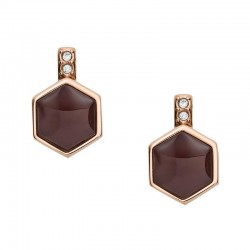 Buy Fossil Ladies Earrings Classics JF03059791