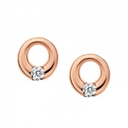 Buy Skagen Ladies Earrings Elin SKJ0314998
