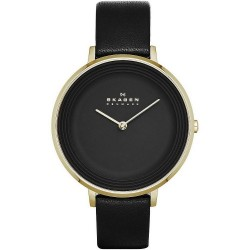 Buy Skagen Ladies Watch Ditte SKW2286