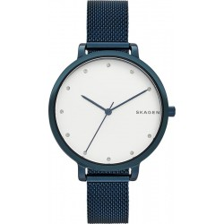 Skagen Ladies Watch Hagen SKW2579